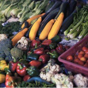 Wo sind viele Antioxidantien drin?