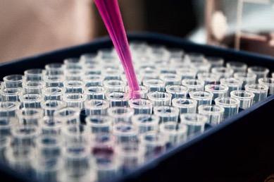 Leberkrebs, Krebsstammzellen