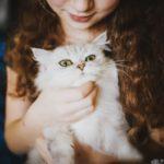 Symptome bei einer Katzenallergie