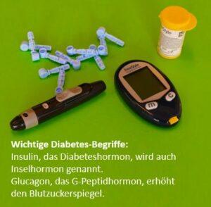 Diabetes Typ 2 und Typ 1 Ursachen Symptome Folgen und Ernährung