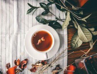 Weißer Tee: Mehr als antivirale und antibakterielle Wirkung