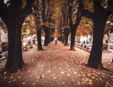 Taphephobie - Die Angst, lebendig begraben zu werden