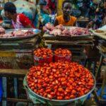 Studie: Vitamin E aus Palmöl hilft die Immunabwehr zu stärken