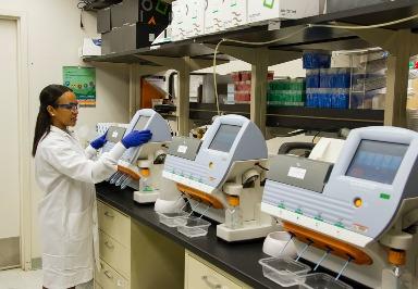 Infektionen: Schnelltest erkennt auch unbekannte Ursachen von Infektionen im Körper