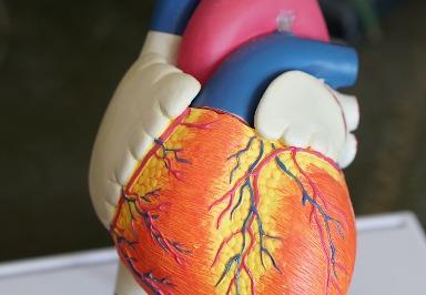 Kardiomyopathie