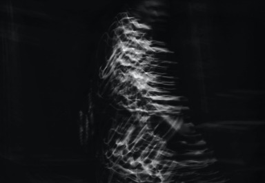 Echokardiogramm